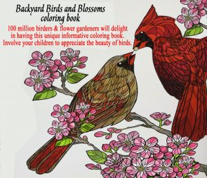 Birds and Blossoms coloring book artwork featuring 2 birds